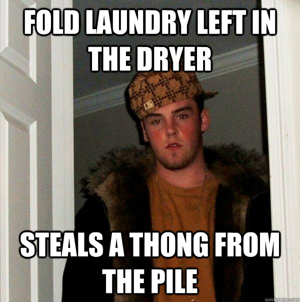 Fold Laundry Left in the dryer steals a thong from the pile - Fold Laundry Left in the dryer steals a thong from the pile  Scumbag Steve