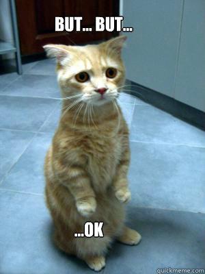 BUT... BUT... ...OK - sad cat blog - quickmeme