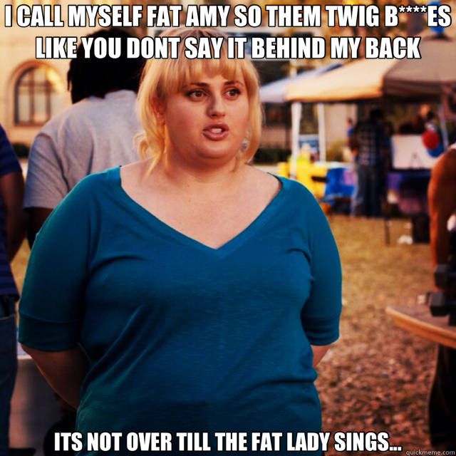 I CALL MYSELF FAT AMY SO THEM TWIG B****ES LIKE YOU DONT SAY IT BEHIND MY BACK ITS NOT OVER TILL THE FAT LADY SINGS... - I CALL MYSELF FAT AMY SO THEM TWIG B****ES LIKE YOU DONT SAY IT BEHIND MY BACK ITS NOT OVER TILL THE FAT LADY SINGS...  Misc