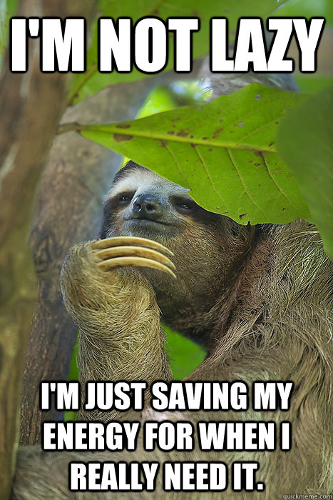 Sloth memes can u not - photo#28