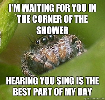 3c938322bebd356ecf528a3b30f4e133b48ccb3594125a6d37811a2ad25abbd7 i'm waiting for you in the corner of the shower hearing you sing,Misunderstood Spider Meme