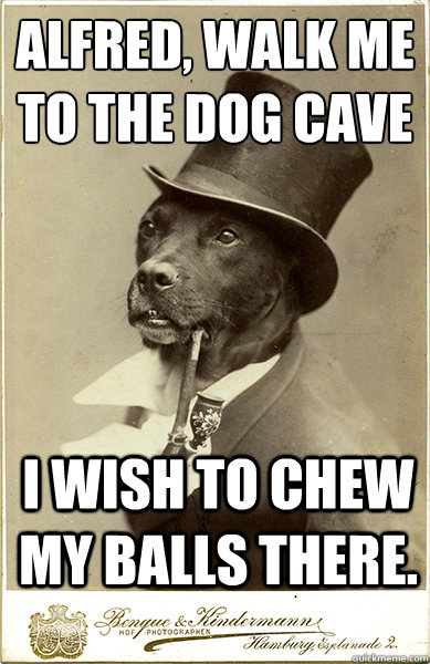 Alfred, walk me to the dog cave  I wish to chew my balls there. - Alfred, walk me to the dog cave  I wish to chew my balls there.  Old Money Dog