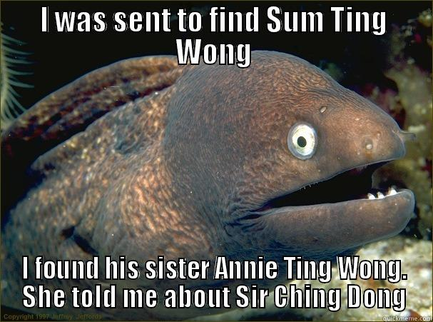 I WAS SENT TO FIND SUM TING WONG I FOUND HIS SISTER ANNIE TING WONG. SHE TOLD ME ABOUT SIR CHING DONG Bad Joke Eel