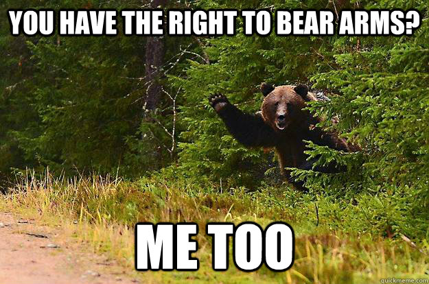 You have the right to bear arms? Me too - You have the right to bear arms? Me too  Misc