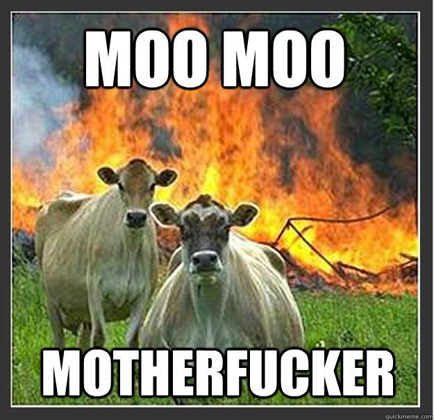 Moo moo Motherfucker - Moo moo Motherfucker  Evil cows