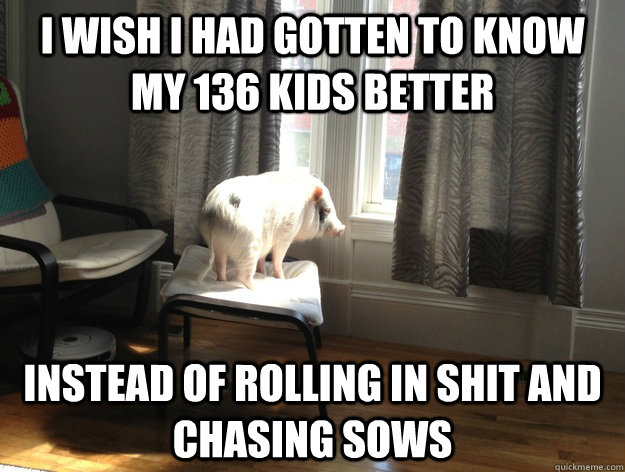 i wish i had gotten to know my 136 kids better instead of rolling in shit and chasing sows
