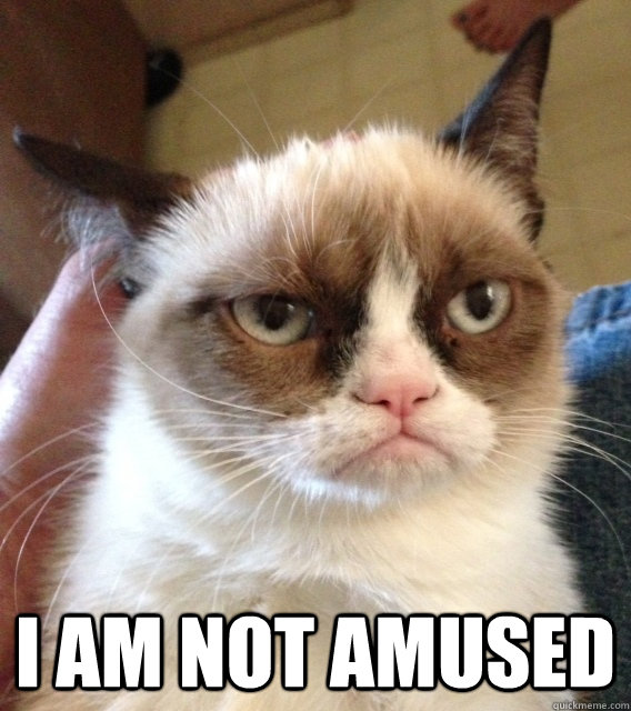 Not Amused Grumpy Cat memes | quickmeme