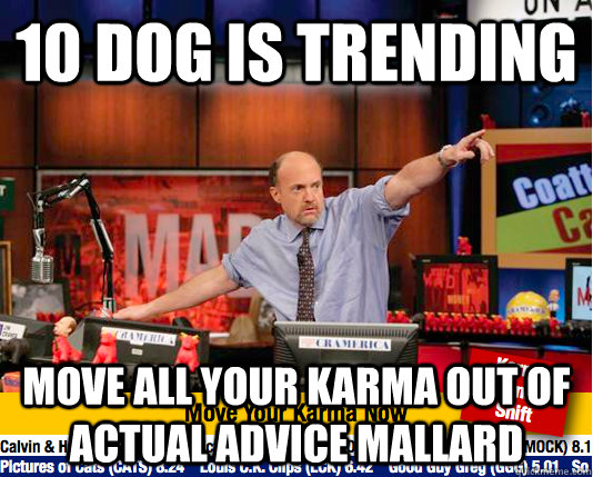 10 DOG IS TRENDING MOVE ALL YOUR KARMA OUT OF ACTUAL ADVICE MALLARD