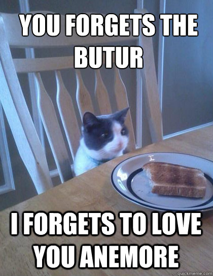You forgets the butur I forgets to love you anemore - You forgets the butur I forgets to love you anemore  Breakfast Cat