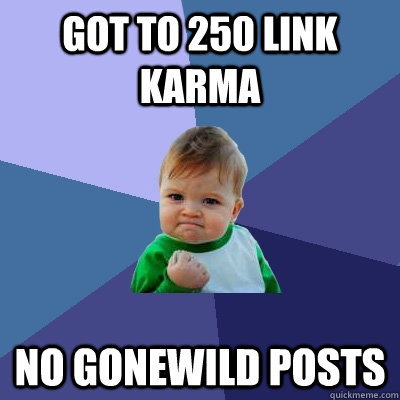 got to 250 link karma no gonewild posts - got to 250 link karma no gonewild posts  Success Kid