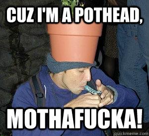 CUz i'm a pothead, mothafucka!