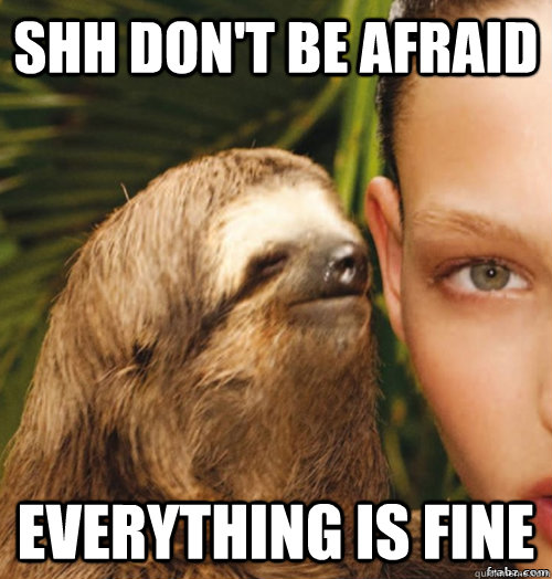 Shh don't be afraid everything is fine - Shh don't be afraid everything is fine  rape sloth