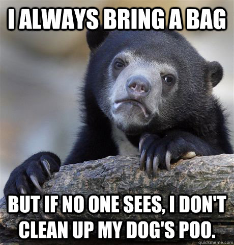 I always bring a bag But if no one sees, I don't clean up my dog's poo.  - I always bring a bag But if no one sees, I don't clean up my dog's poo.   Confession Bear