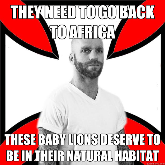 They need to go back to africa these baby lions deserve to be in their natural habitat