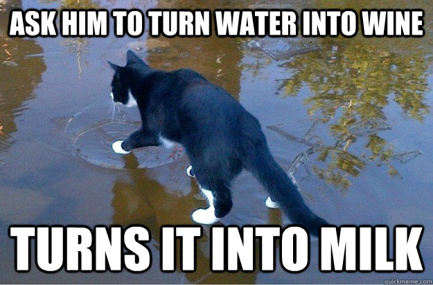 ask him to turn water into wine turns it into milk - ask him to turn water into wine turns it into milk  Jesus Cat