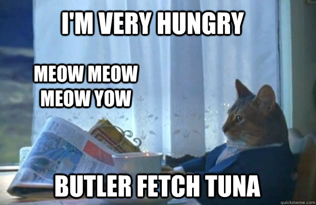 I'm very hungry meow meow meow yow butler fetch tuna - I'm very hungry meow meow meow yow butler fetch tuna  Sophisticated Cat