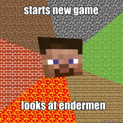 starts new game looks at endermen