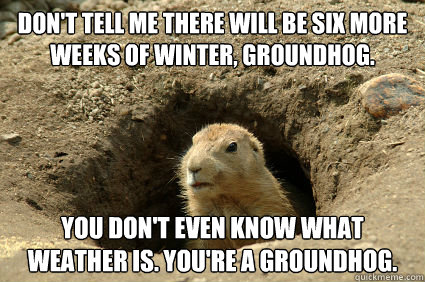 Don't tell me there will be six more weeks of winter, groundhog. you don't even know what weather is. you're a groundhog.  Groundhog Day