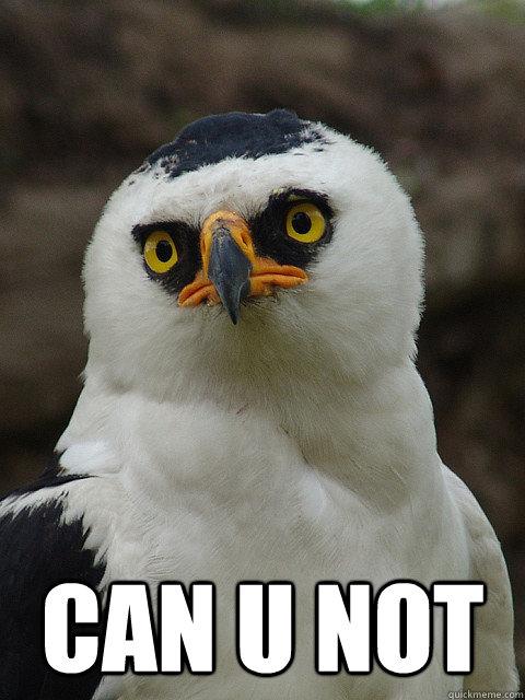Can u not - canunotbird - quickmeme
