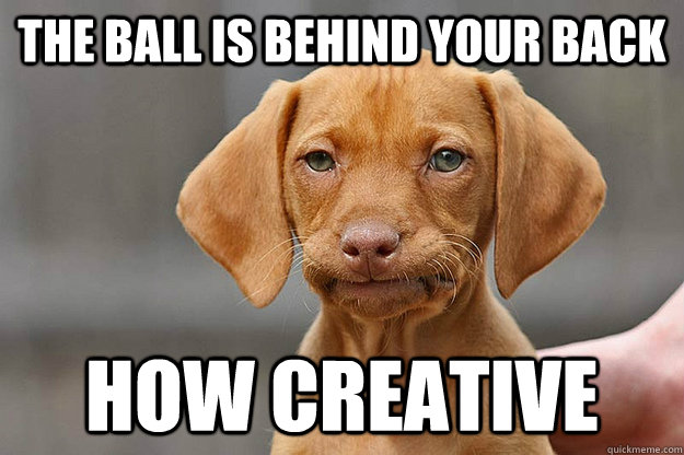 The ball is behind your back Unamused Puppy Meme
