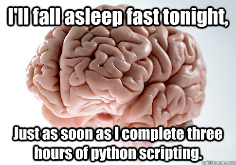 I'll fall asleep fast tonight, Just as soon as I complete three hours of python scripting. - I'll fall asleep fast tonight, Just as soon as I complete three hours of python scripting.  Scumbag Brain