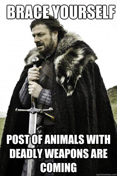 Brace yourself post of animals with deadly weapons are coming