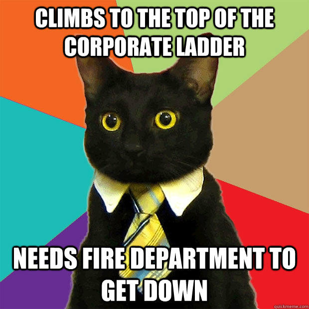 Climbs to the top of the corporate ladder Needs fire department to get down