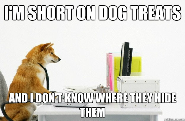 i'm short on dog treats and i don't know where they hide them - i'm short on dog treats and i don't know where they hide them  Daytrader Dog