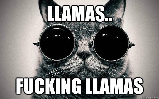 llamas.. Fucking llamas  Morpheus Cat Facts