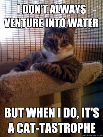 I don't always venture into water but when I do, It's a cat-tastrophe  The Most Interesting Cat in the World