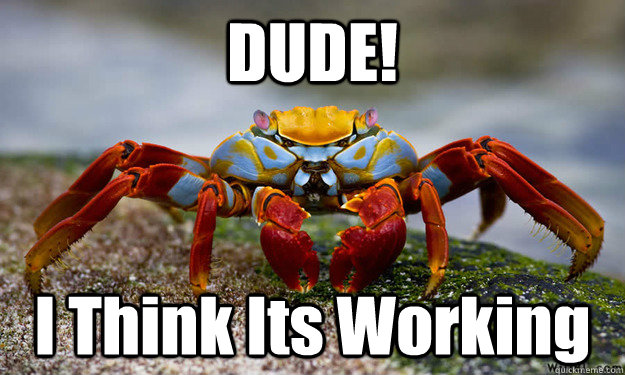 DUDE! I Think Its Working - DUDE! I Think Its Working  Trippin Crab