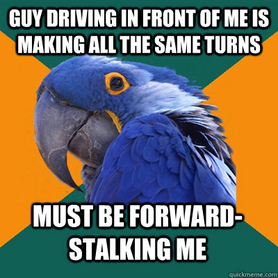 guy driving in front of me is making all the same turns must be forward-stalking me - guy driving in front of me is making all the same turns must be forward-stalking me  Paranoid Parrot