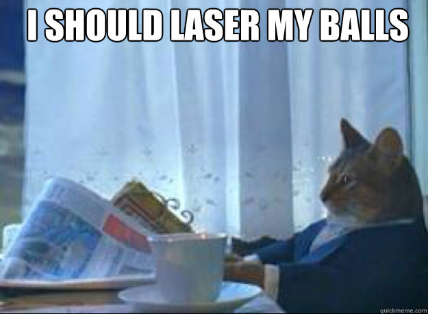 I should laser my balls  - I should laser my balls   I should buy a boat cat