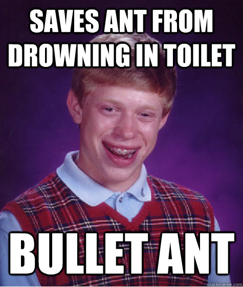 Saves ant from drowning in toilet bullet ant - Saves ant from drowning in toilet bullet ant  Bad Luck Brian