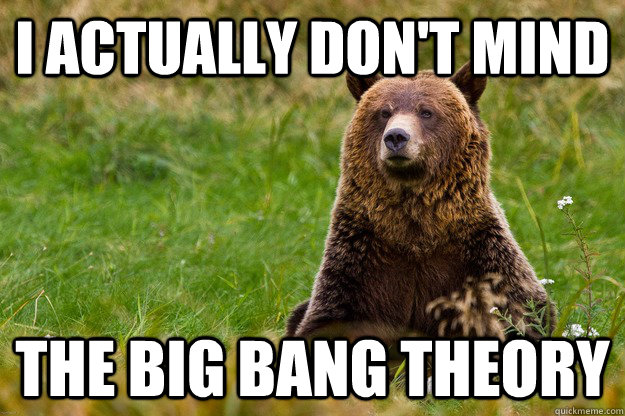 I actually don't mind the big bang theory - I actually don't mind the big bang theory  Blatant Statement Bear