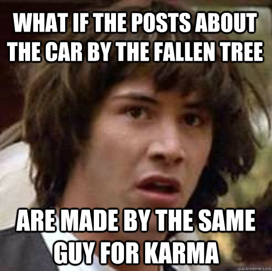 What if the posts about the car by the fallen tree are made by the same guy for karma - What if the posts about the car by the fallen tree are made by the same guy for karma  conspiracy keanu