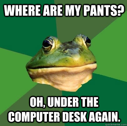 Where are my pants? Oh, under the computer desk again. - Where are my pants? Oh, under the computer desk again.  Foul Bachelor Frog