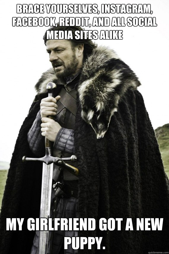 Brace yourselves, instagram, facebook, reddit, and all social media