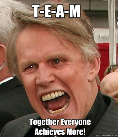 T-E-A-M Together Everyone Achieves More!   Gary Busey