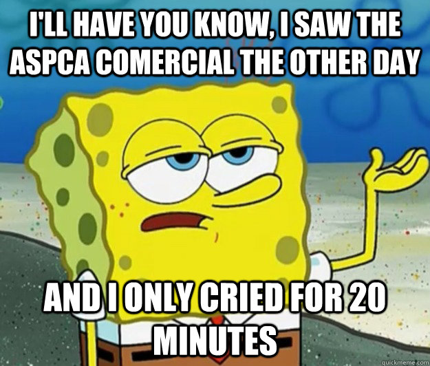 I'll have you know, I saw the ASPCA comercial the other day and I only cried for 20 minutes - I'll have you know, I saw the ASPCA comercial the other day and I only cried for 20 minutes  Tough Spongebob