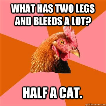what has two legs and bleeds a lot?  half a cat. - what has two legs and bleeds a lot?  half a cat.  Anti-Joke Chicken