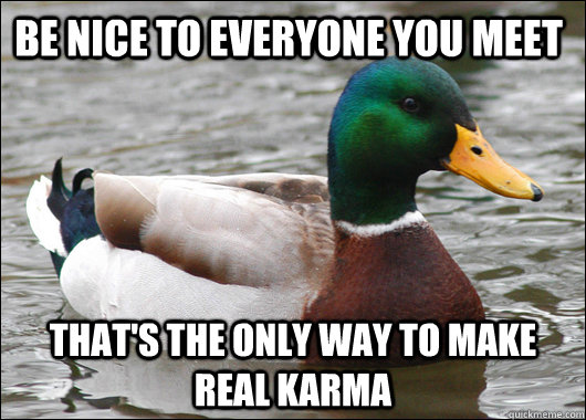 Be nice to everyone you meet that's the only way to make real karma - Be nice to everyone you meet that's the only way to make real karma  Actual Advice Mallard