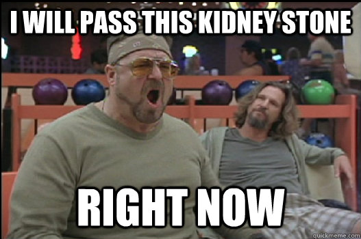 I Will pass this kidney stone RIGHT NOW - I Will pass this kidney stone RIGHT NOW  Angry Walter