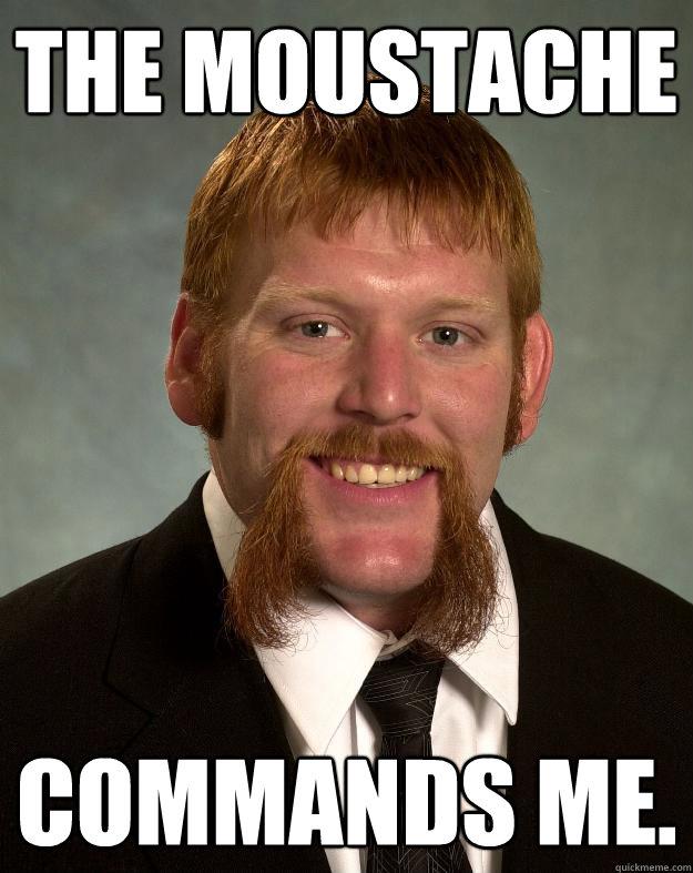 The moustache Commands me.  EPIC MUSTACHE
