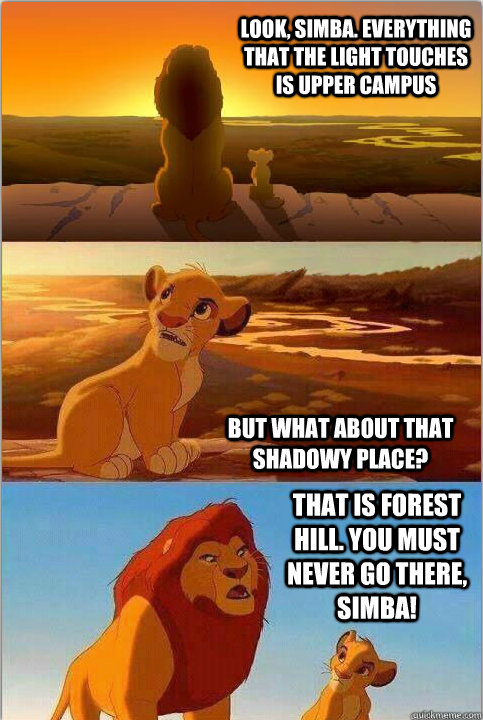 Look, Simba. Everything that the light touches is Upper Campus But what about that shadowy place? That is Forest Hill. You must NEVER go there, Simba!