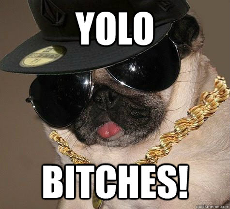 YOLO Bitches!
