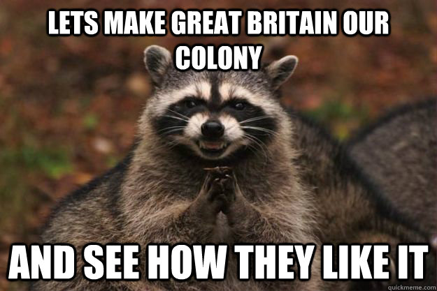 Lets make Great Britain our colony and see how they like it - Lets make Great Britain our colony and see how they like it  Evil Plotting Raccoon