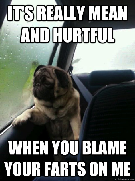 it's really mean and hurtful when you blame your farts on me - it's really mean and hurtful when you blame your farts on me  Introspective Pug