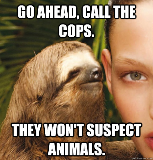 Go ahead, call the cops. They won't suspect animals. - Go ahead, call the cops. They won't suspect animals.  Whispering Sloth