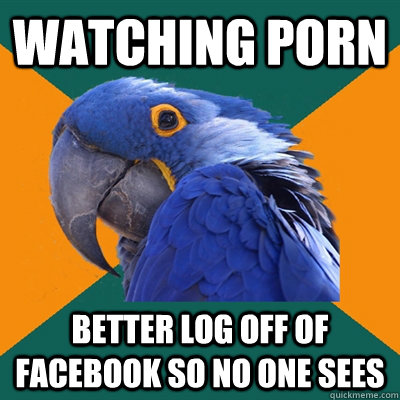 Watching porn Better log off of FaceBook so no one sees - Watching porn Better log off of FaceBook so no one sees  Paranoid Parrot